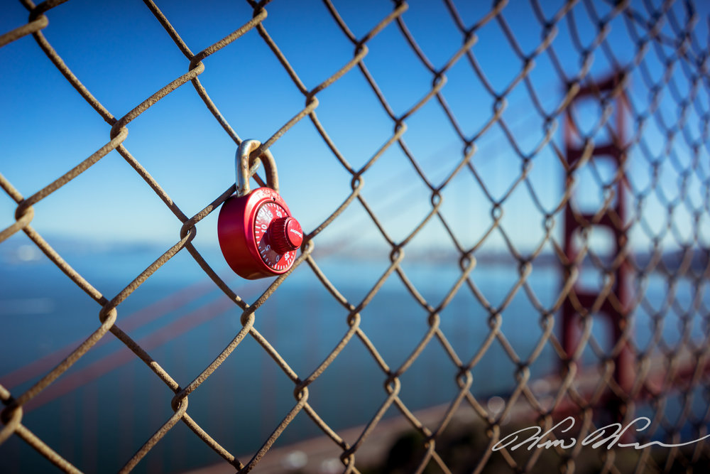 Golden Gate Fence