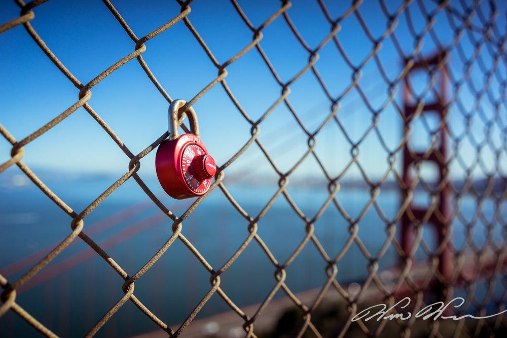 Golden Gate Fence