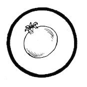 Ginseng3.jpg