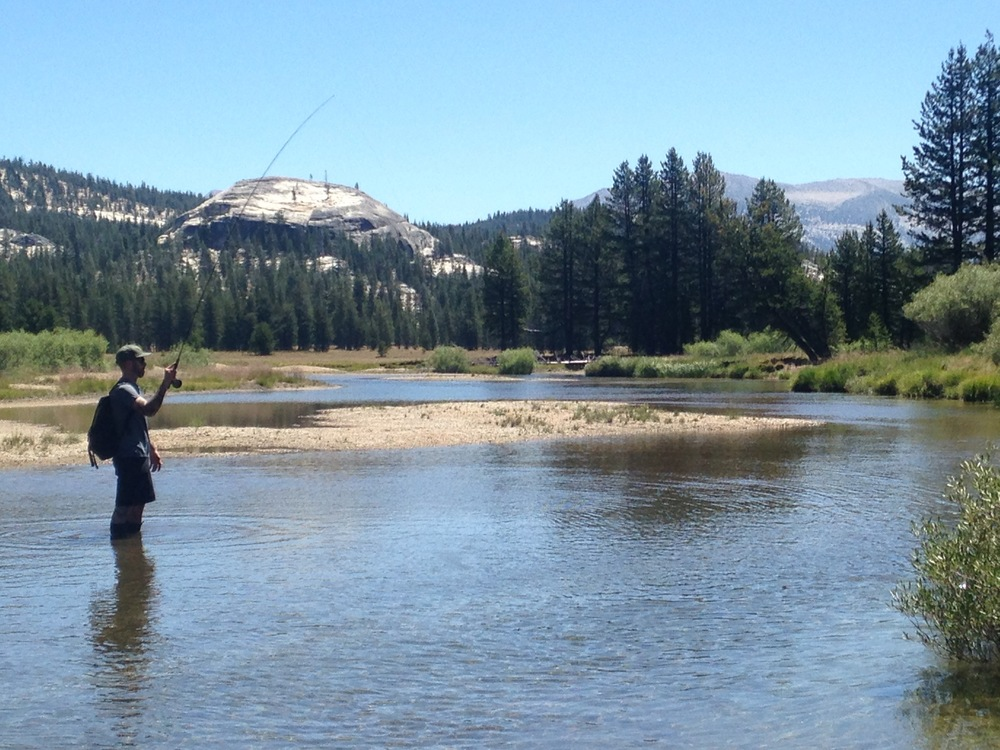 Tuolumne Meadows Fly FIshing