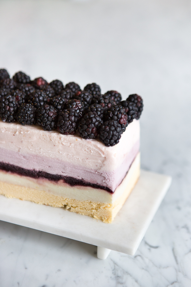 Summer Berry Ice Cream Cake from Camille Styles