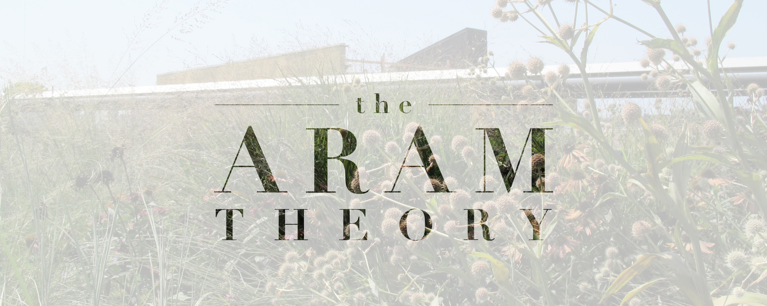 THE ARAM THEORY