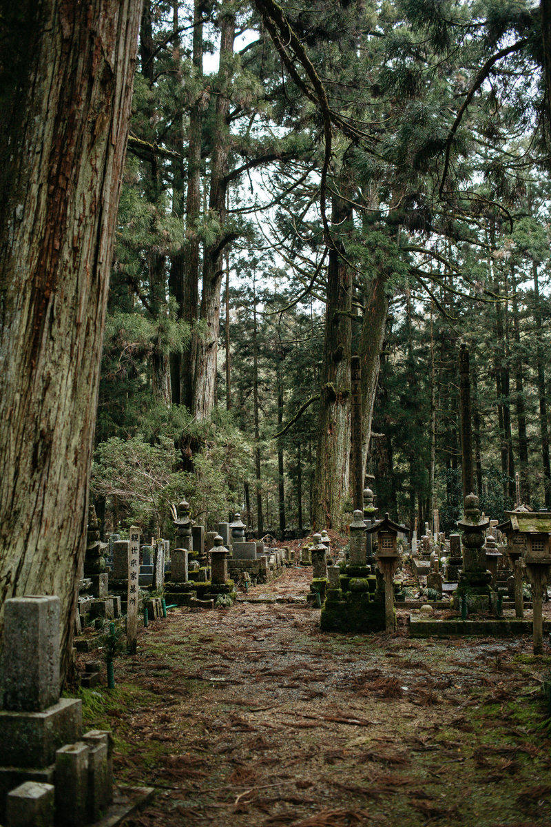 23 JAPAN MOUNT KOYA-3799.jpg