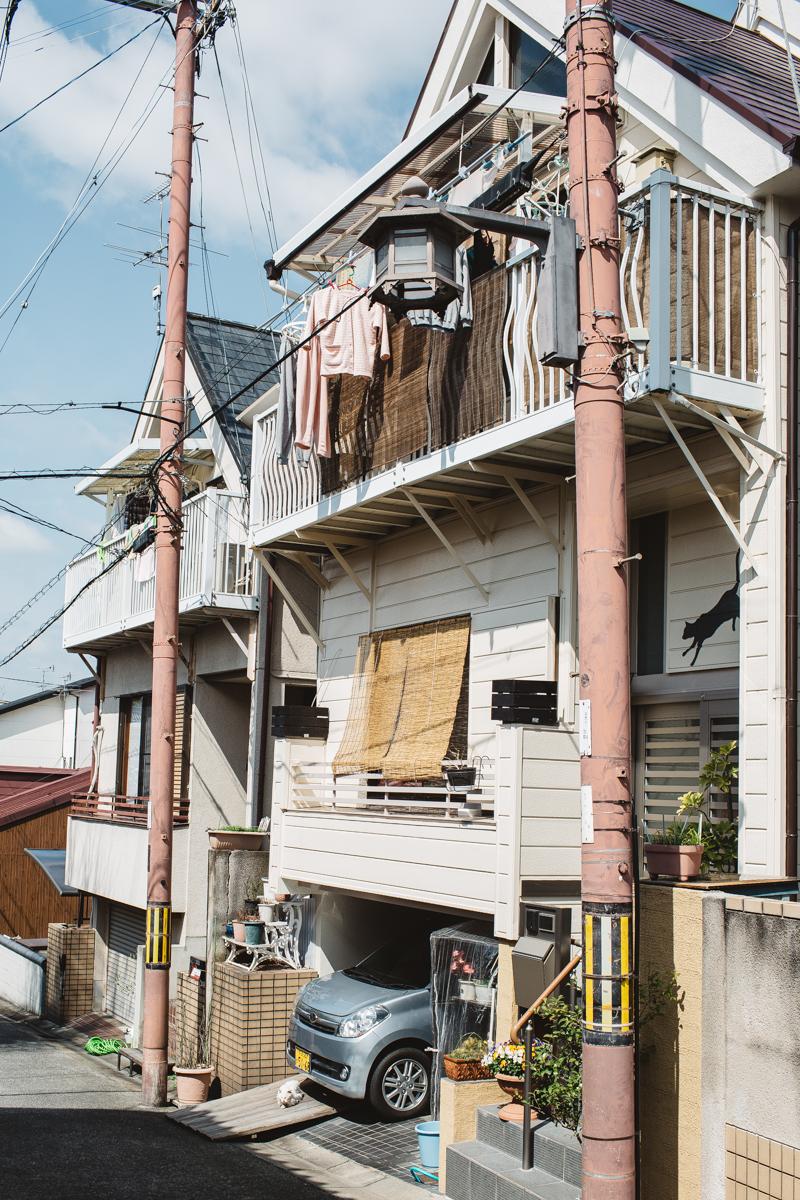 NARA JAPAN-4007.jpg