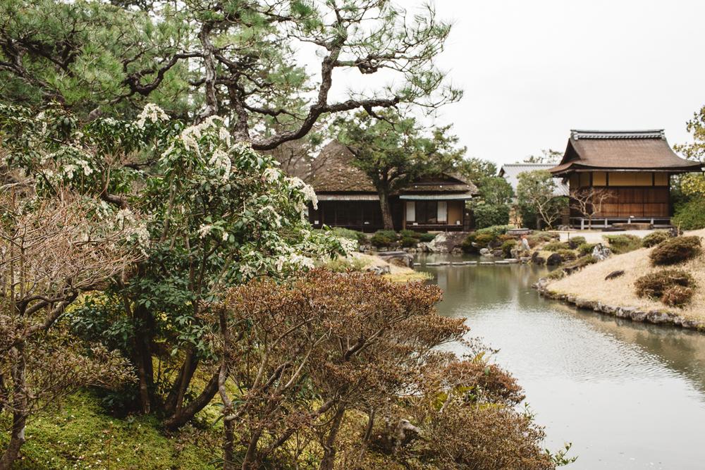 NARA JAPAN-4186.jpg
