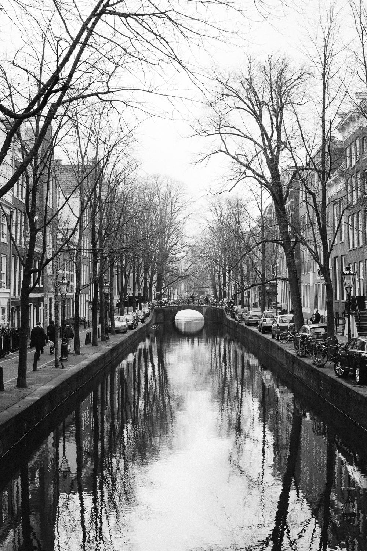 b-w-Amsterdam 2016-2206.jpg