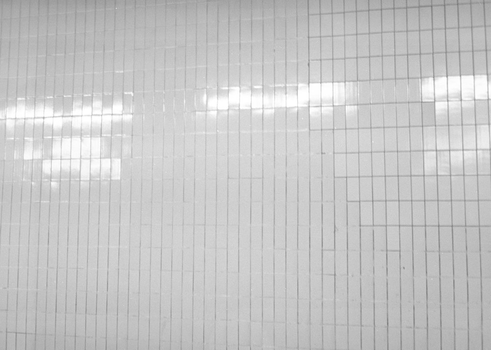 nobel2 (kopia).jpg