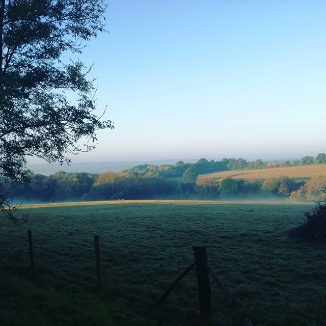 Morning Sussex mist