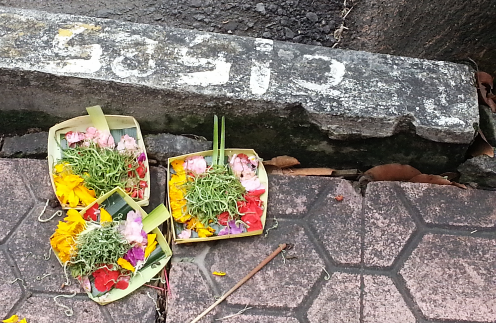 Prayer flowers. We saw hundreds of these everywhere we went in Bali.