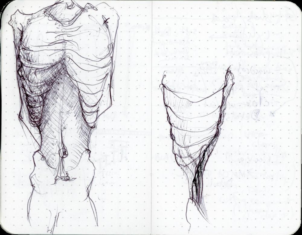 Sketchbook_026_0000_Hue_Saturation-1.png