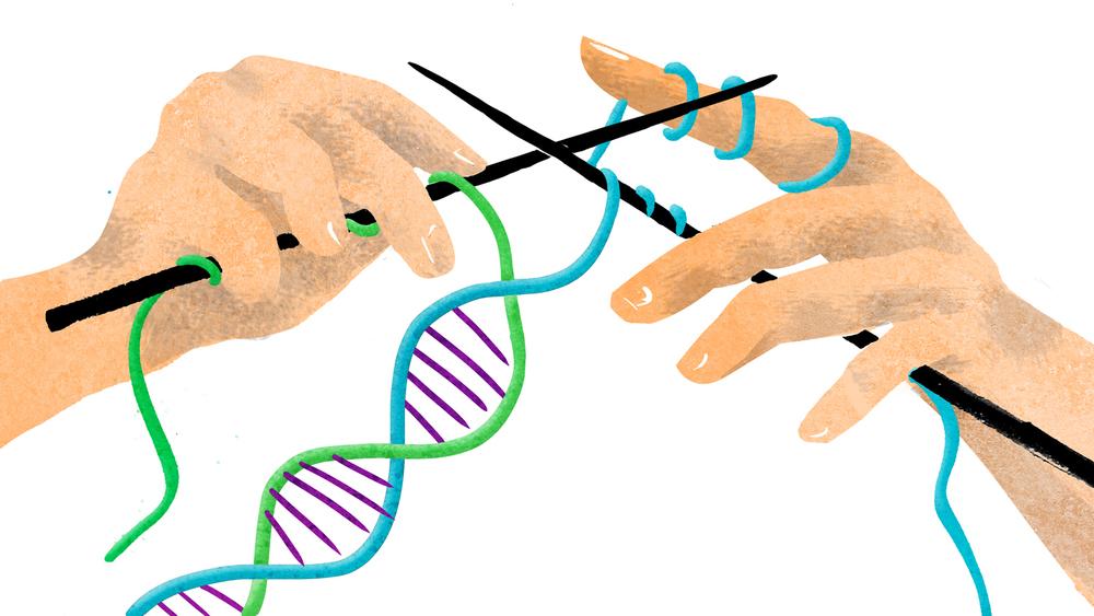 Katolik kilisesinin DNA'nın evrimi hakkındaki resmi görüşü