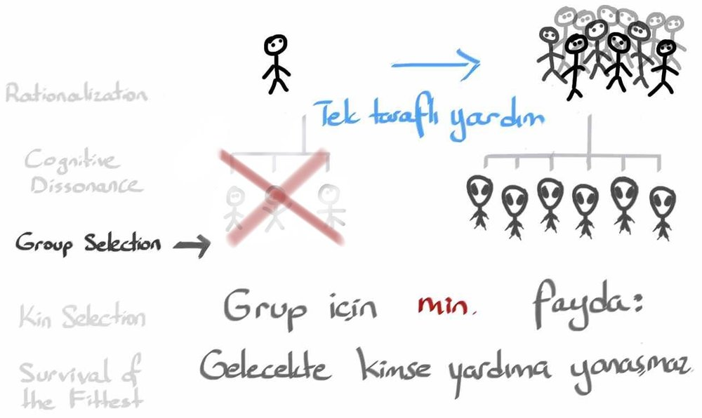 3_GroupSelection13.jpg