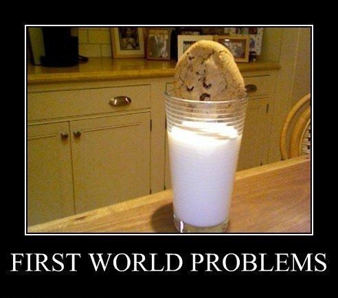 fırstworldproblem.jpg