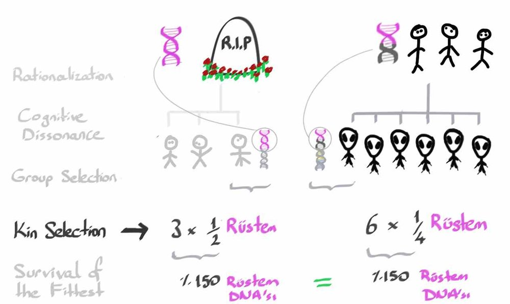 2_Altruism13.jpg