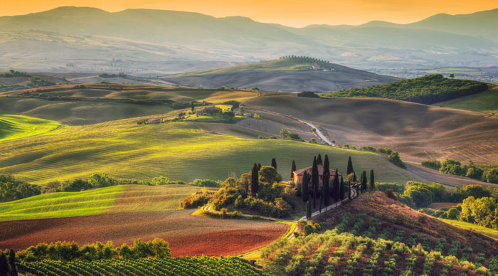 Tuscany-Wine-Region-Bookmundi.jpg