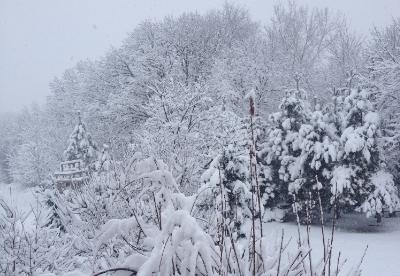 February 1, 2015