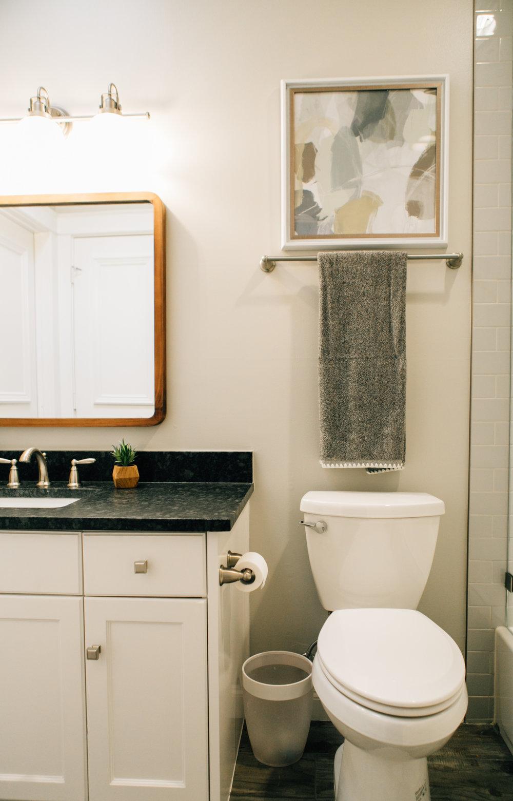 Bathroom Remodel 250.jpg