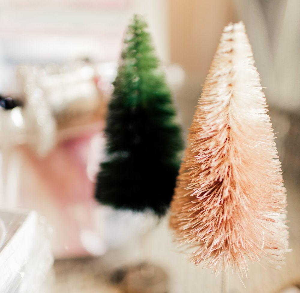 Bottle BrushTrees -