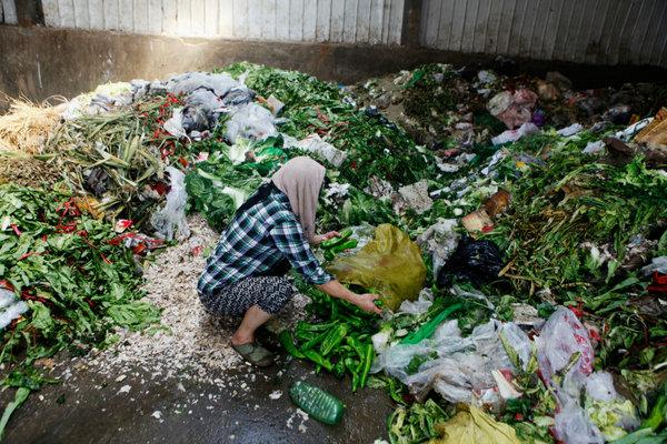 一名妇女在西安的蔬菜批发市场外捡拾被丢弃的蔬菜。因为六月当地天气炎热,每天被该菜市场丢弃的蔬果约有 60 吨。(图片文字来源:路透社)