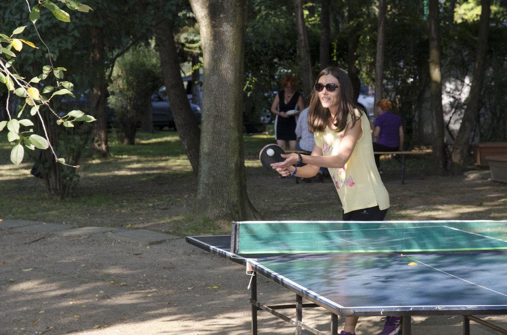 tenis de masa club transilvania
