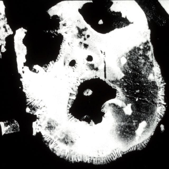 """UNEXPOSED is hosting a 16mm film screening of Stephen Broomer's """"Potamkin"""" at The Carrack Modern Art on January 28th!"""