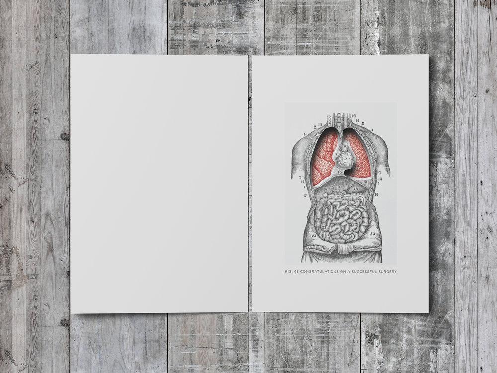 Lungs_005.jpg