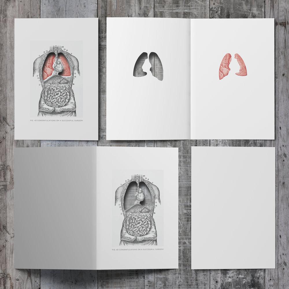 Lungs_006.jpg