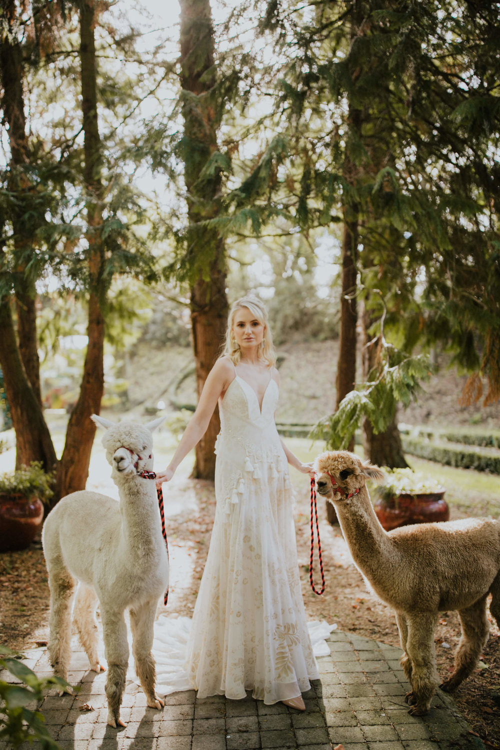 boho_wedding_alpaca_xpose_station_house_livia_figueiredo_photography_17.jpg