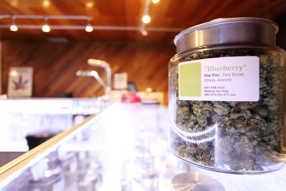 Cannabis Dispensary Business