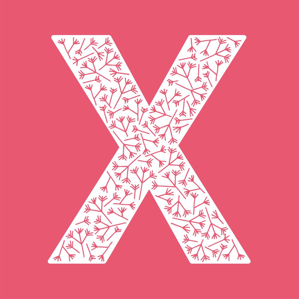 X-color.jpg