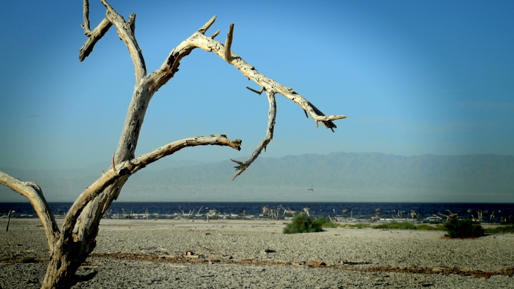 7- Salton Sea FINAL-2.jpeg