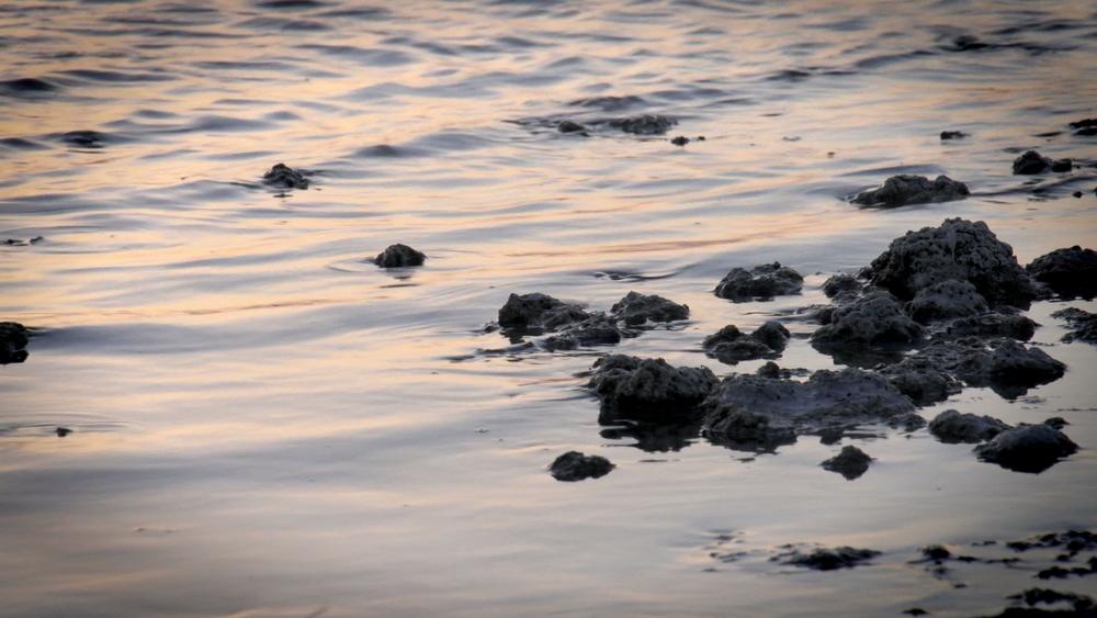 7- Salton Sea FINAL.jpeg