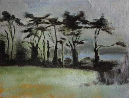 Tregunna Trees I