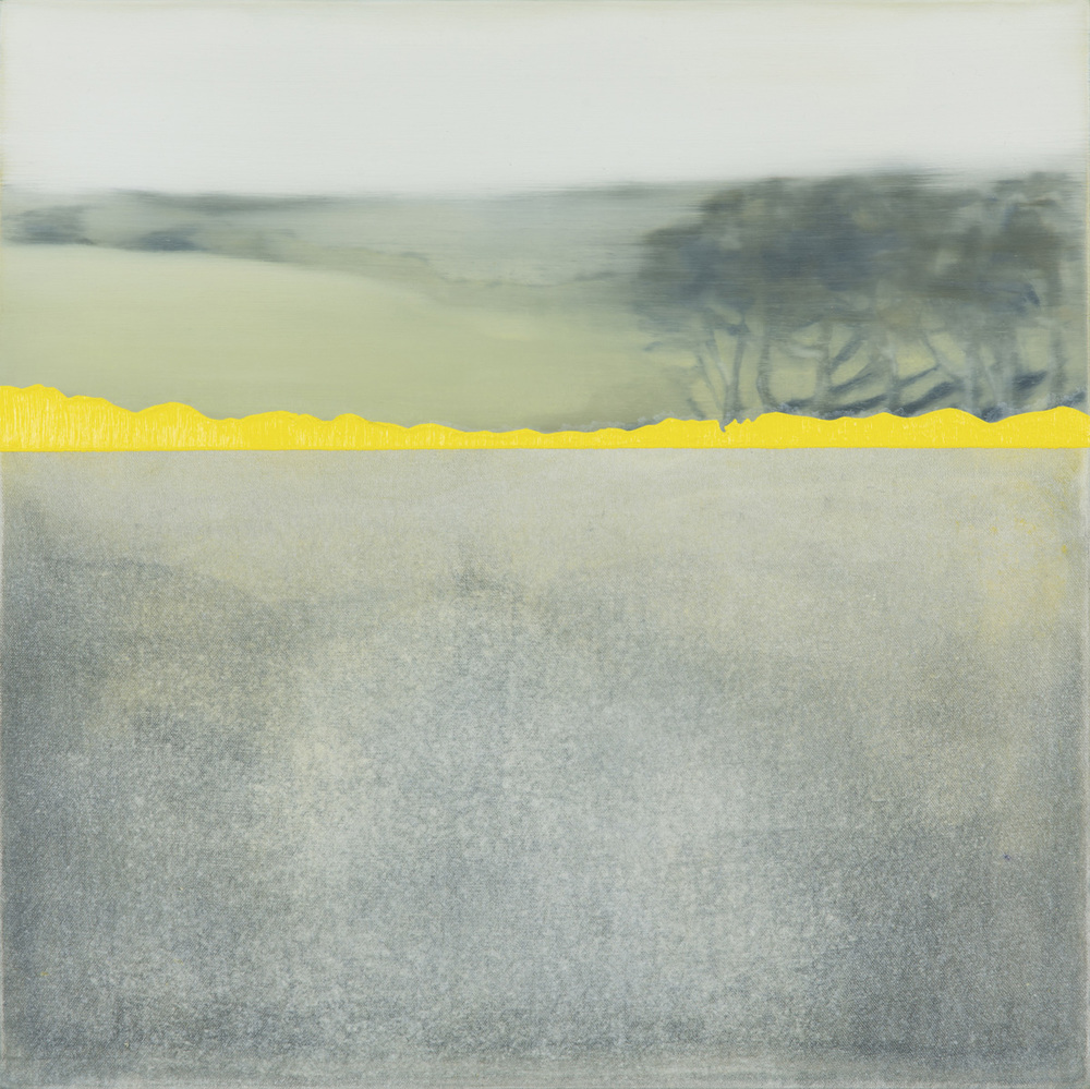 Kerry Harding  Yellow Trevellan 50 x 50   oil on canvas  SOLD