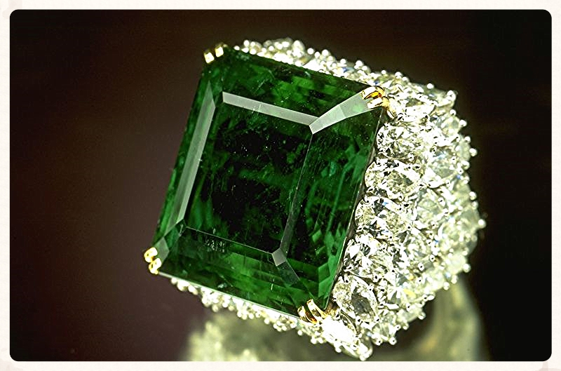 The Chalk Emerald. From the Smithsonian Museum of Natural History.
