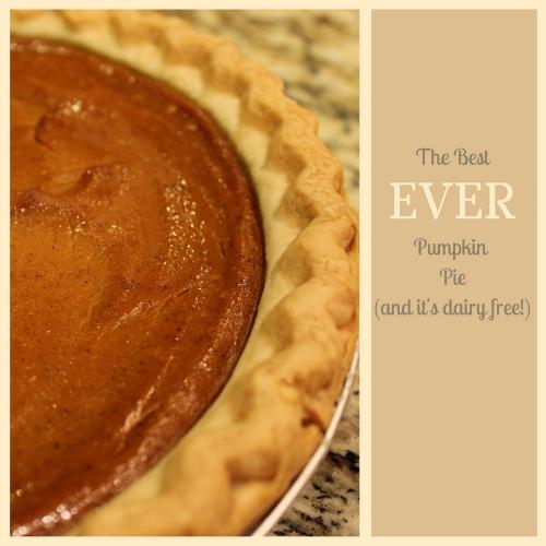 best ever dairy free pumpkin pie recipe