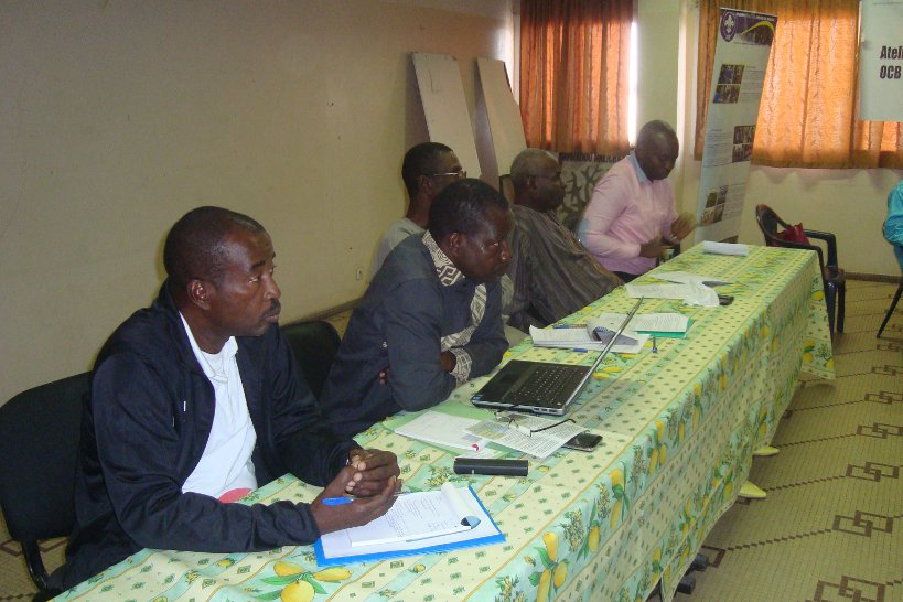 Lamine (farthest left) chairing the review of the network's constitution.