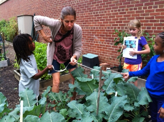 """First graders measure the """"mystery plant"""" with Teacher Jane Hellwell at Watkins Elementary."""