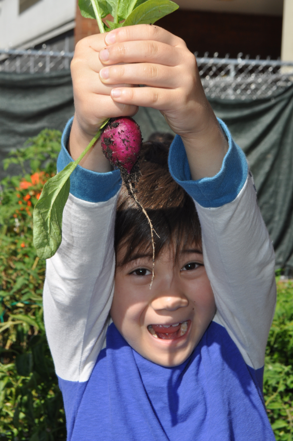 The thrill of pulling fresh food right out of the soil!