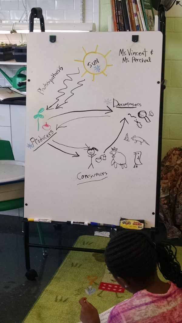 Learning all about the food system at Watkins.
