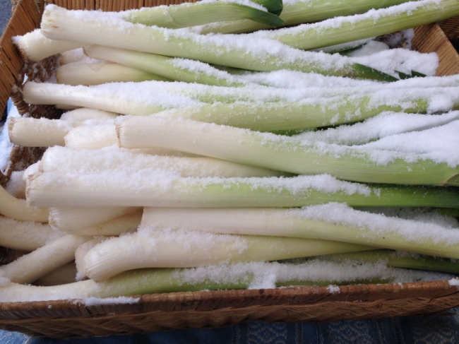 Snow-dusted leeks at the Dupont Circle farmers market, open year round.