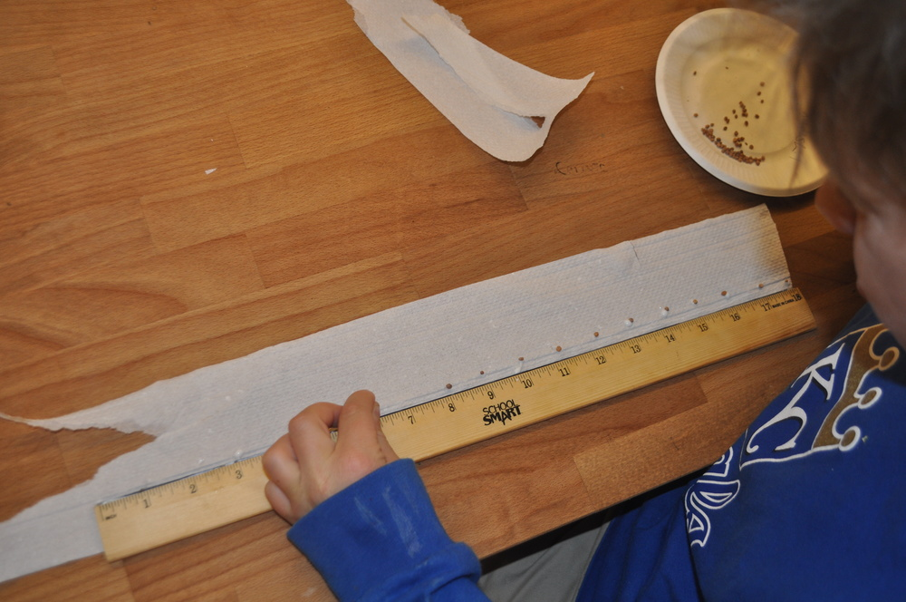 A student gingerly places seeds on her seed tape, spaced apart just right.