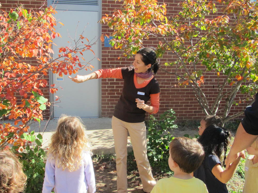 Ms. Vincent demonstrates just how cool trees can be.