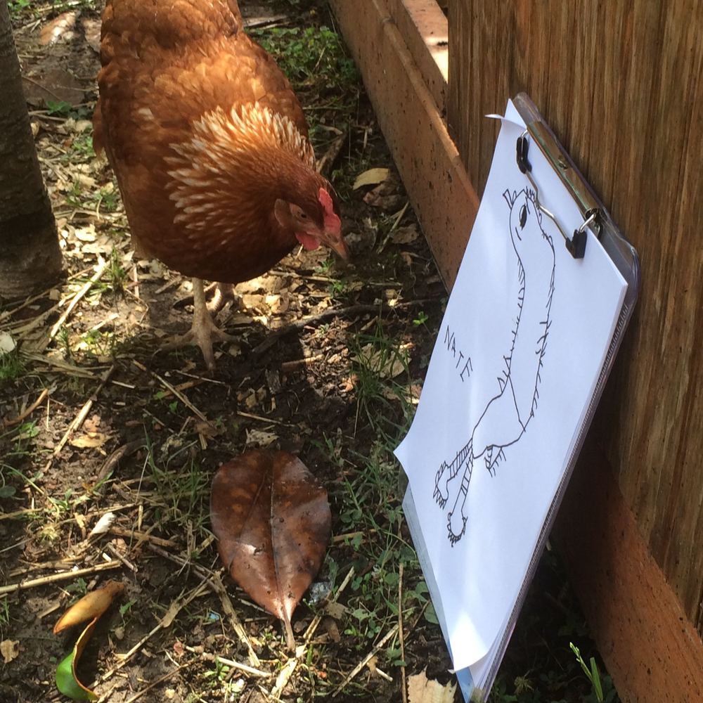 Chicken art critic.