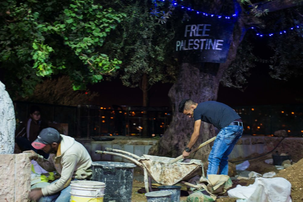 Youth Against Settlements volunteers at work.  Hebron, West Bank, Palestine