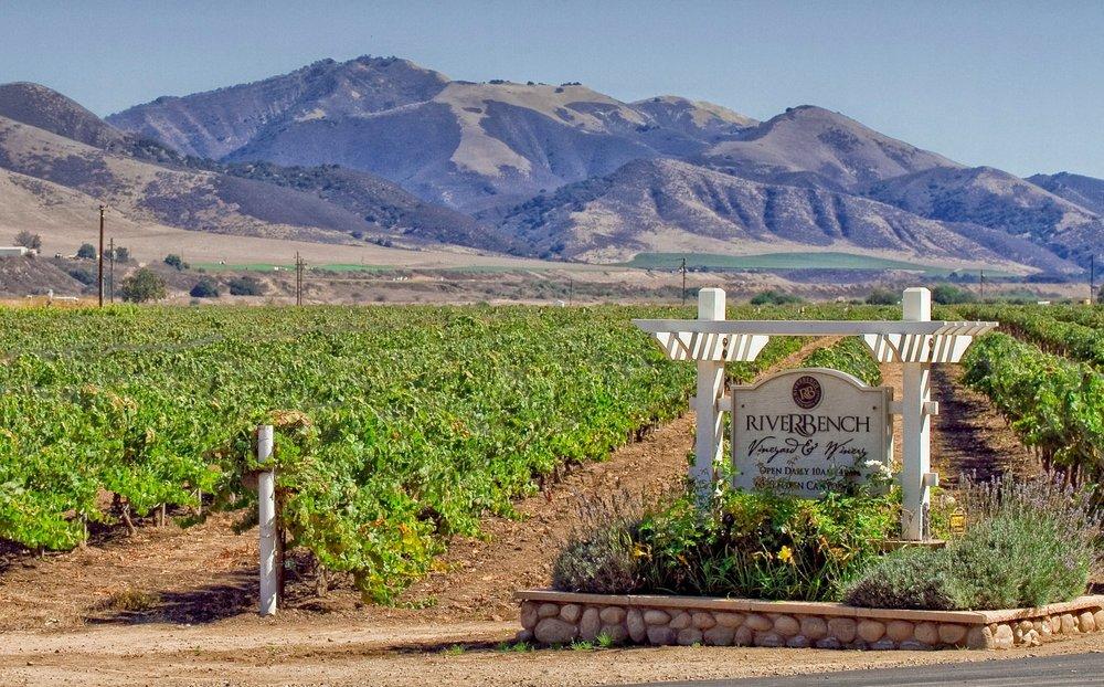 Photo C/O Riverbench Vineyard & Winery