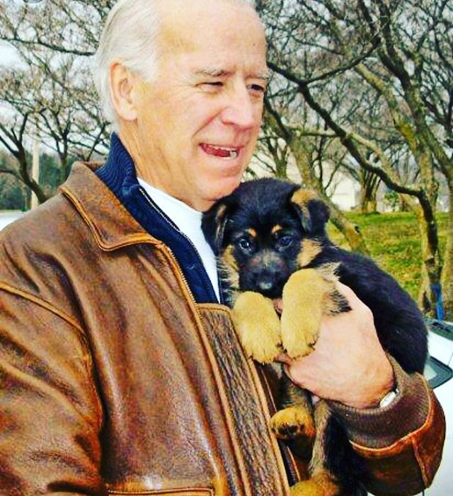 we are thankful for this photo of Biden with a puppy. HAPPY THANKSGIVING 🦃