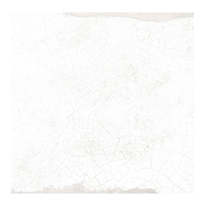 Antique Blanc Wall 5x5.jpeg