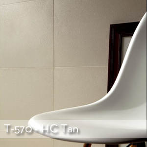 Thumbnail HC Tan.jpg