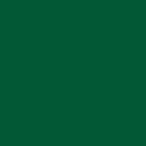Amazon Green Gloss